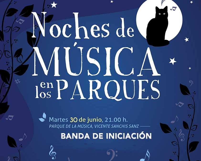 Noche de musica Banda de Iniciacion